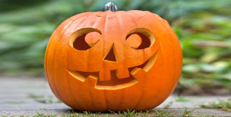 Top Picks for the October Half Term